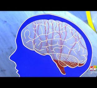 Убийцы вашего мозга. Жить здорово!  18.05.2020